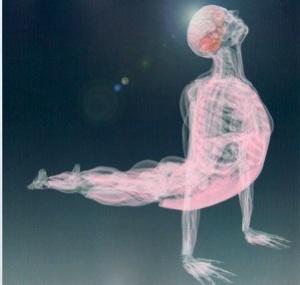 fascia yoga