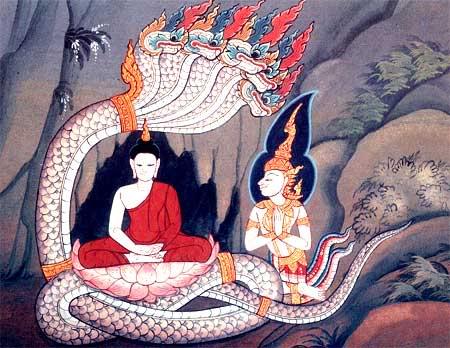mucalinda naga coils protect buddha buddhist mythology mesosyn com